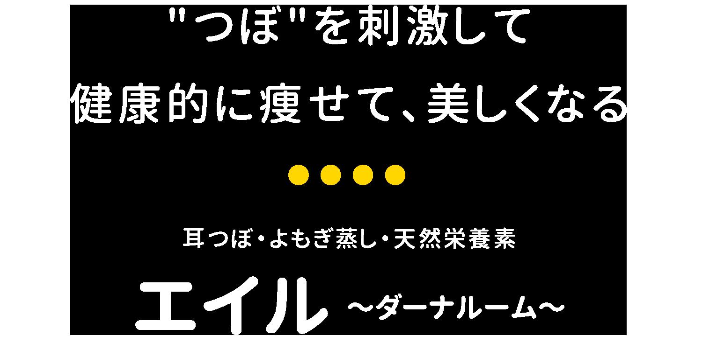エイル ~ダーナルーム~